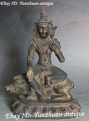 Tibet Buddhism Bronze Painting On Pig Green Tara Mahayana Goddess Statue