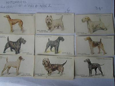 Players Dogs by Wardle ( Full Length )  Full Set (50) Cigarette Cards 1931