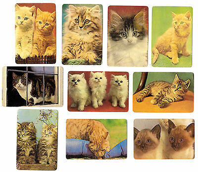 beautiful CATS- lot of 10 PORTUGAL animal cats CALENDAR CARDS  year 1988