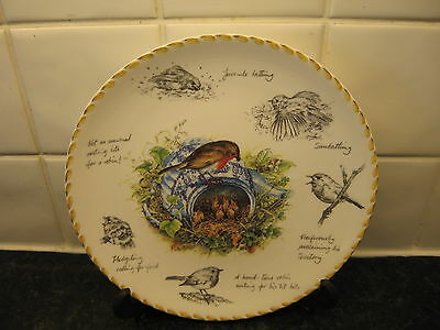 The Robin Bird Plate -  Birdwatchers Notebook     - Danbury Mint