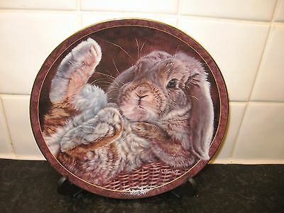 Bunny Tales   Plate -  Footloose  - Bradford   Exchange