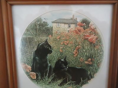 Black Cats Country Garden Framed Print