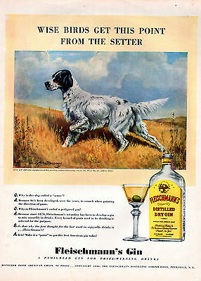 1940 Fleischmann's Gin ad --Setter dog- At the Point----0-853