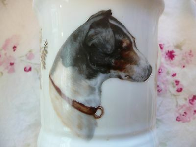 Vintage/Antique SHAVING MUG w Spaniel DOG! Coffee/Storage/Decor~Gorgeous Puppy!