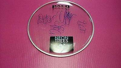 Autographed Neon Trees Drumhead