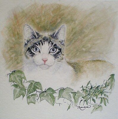 Art Greeting Card Cat Kitty Animals Pet Nature Paws Painting Watercolor Picture