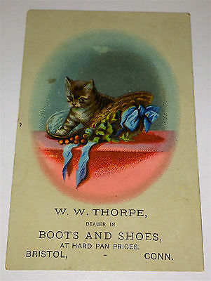 Antique Victorian Adorable Kitten, Advertising Thorpe's Boots & Shoes Trade Card