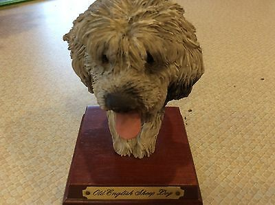 Old English Sheepdog Hand Painted Academy  Lovely Dog Head  Brand New In Box