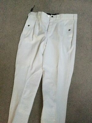 "Mark Todd Mens breeches, pleated  White, 30"" waist, new with tags"