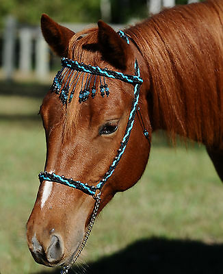 Hand Braided Miniature Show Halter, Horse Tack, BLACK / TURQUOISE --NEW!