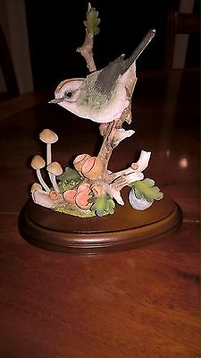 Country Artists Bird - Firecrest With Wild Mushrooms
