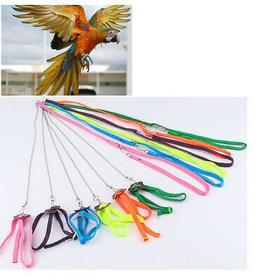 Harness Bird Leash And Aviator Birds Pet Fred 6 Foot Easiest Safest Premier New