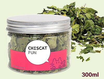 Dried Silvervine Leaves for Cats and Kittens. Large Pot. Alternative to Catnip