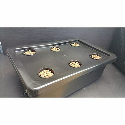 6 Pot DWC Hydroponic Grow System with Air Pump and Flexible Air Stone