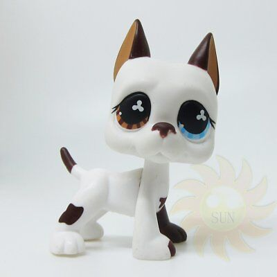 Littlest Pet Shop LPS Collection #577 Great Dane Puppy Dog Blue Eye / Brown Rare
