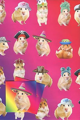 Cute Hamsters With Hats  Gift Wraping 2 Sheet With 2 Matching Tags Any Occasion