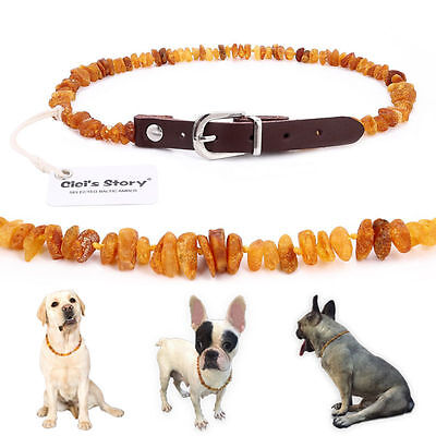 Baltic Amber Flea and Tick Collar with Adjustable Leather Strap for Dogs and Cat