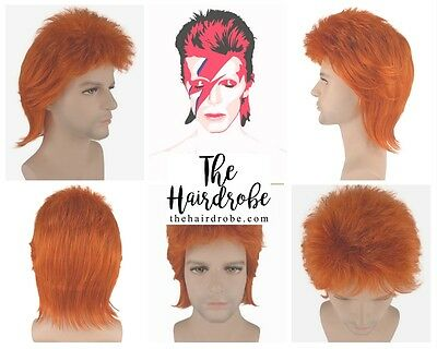 David Bowie Ziggy Stardust Halloween Fancy Dress Wig