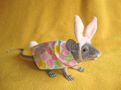 Easter Bunny Costume with Lavender Ears for Rat from Petrats