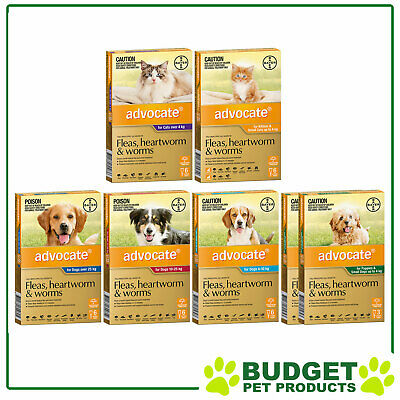 Advocate For Dogs & Cats - 6 Pack