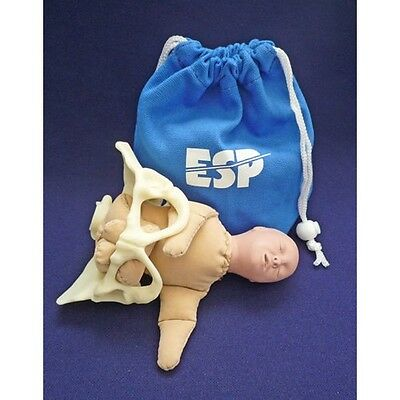 ESP Miniature Birth Model Set