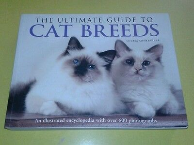 Cat Breeds Of The World Illustrated Encyclopedia 399 Picclick