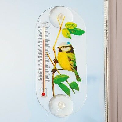 Window Thermometer Suction Cup Blue Tit Design
