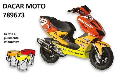 789673 SET PAINTS colors/stickers MALOSSI