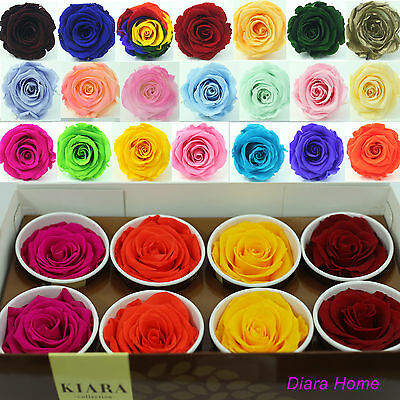 8 Mix single Rose Preserved 100% Natural Real Flower last upto 3 years no water