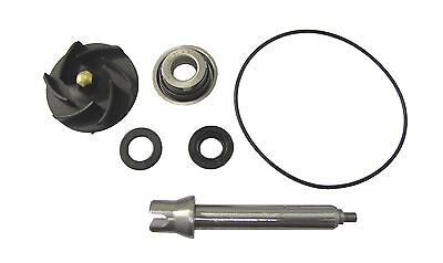 Water Pump Repair Kit Piaggio 500, X9, 00-08