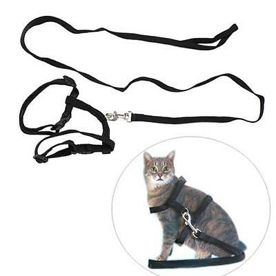Adjustable Nylon Cat Pet Harness Collar Lead Leash Traction Safety Rope