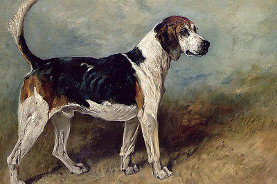 Dream-art oil painting dogs hounds hunting dogs standing in open country canvas