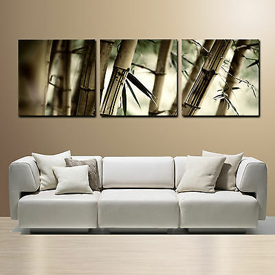 Bamboo Ready To Hang 3 Piece Mounted Wall Art Printbetter Than