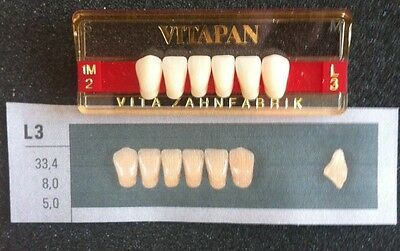 Vitapan Denture Teeth Plastic Dentist Dental Lab  L3   1M2