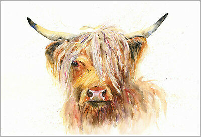 HELEN ROSE Limited Print of my HIGHLAND COW watercolour painting 350
