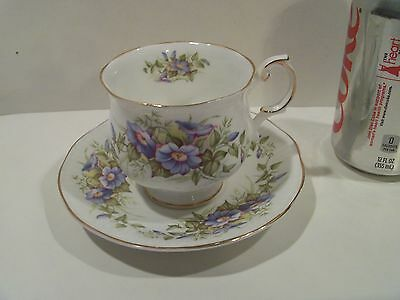 Nice Vintage Antique Queens Rosina Tea Cup And Saucer,wild Flowers,made England