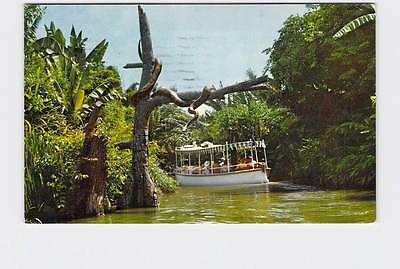 Vintage Postcard Disneyland JUNGLE RIVER CRUISE THROUGH ADVENTURELAND