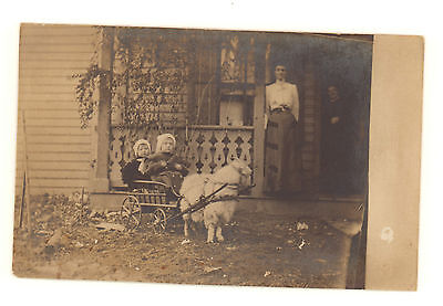 Vintage Real Photo Postcard of 2 Children in a Goat Cart, Portsmouth, Ohio