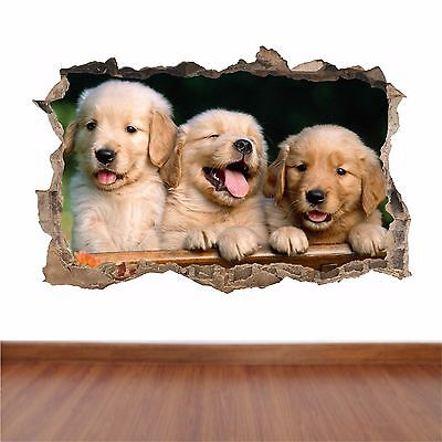 Golden Retriever Puppies- hole in the wall full colour feature sticker decal