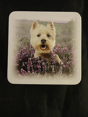 """West Highland White Terrier """"Westie Dog"""" Campbells shortbread Collectible tin"""