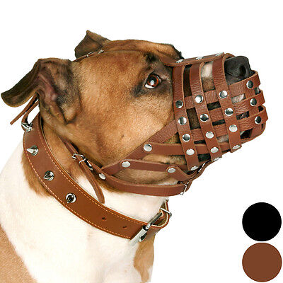PitBull Dog Muzzle AmStaff Leather Muzzles Staffordshire Terrier Secure Basket