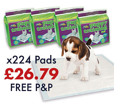 60x60cm 224 Pee Wee Puppy Pet Training Pads/Mats Super Absorbent Toilet Dog/Cat