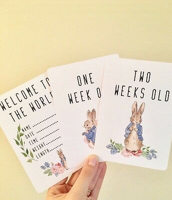Peter Rabbit Baby Milestone Cards