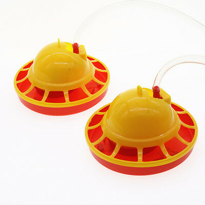 Chicken Drinking Automatic Fountain Brooder Drinkers Set Water Supply Poultry