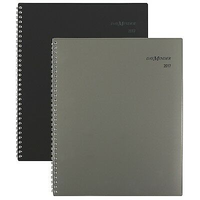 """DayMinder Weekly / Monthly Planner / Appointment Book 2017 8-1/2 x 11"""" Execut..."""