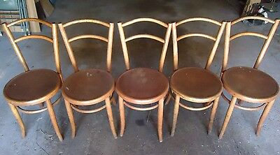 5 Original Bentwood Fischel Antique Parlor Chairs Good Condition 2 Have Damage