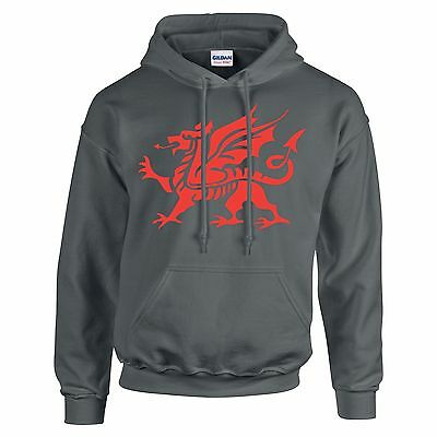 St George's Day Red Dragon Design George And The Dragon England Hoodie