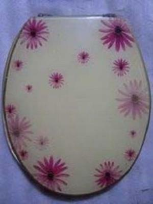 Loo with a View - Pink Gerberas, Poly Resin Decor Toilet Seat, EU250, ONE- OFF