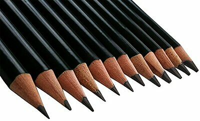 12 Pcs Sketch Pencils Artist Package For Drawing Sketching Charcoal Shading