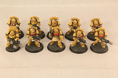 Warhammer Space Marine Imperial Fists Tactical Squad Well Painted